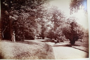 Park Hatch history 005
